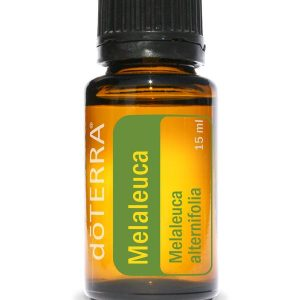 100% reines Teebaumöl (Melaleuca) von dōTERRA® - Ätherische Öl vom Teebaum